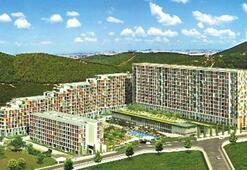 Maltepe'ye 230 milyon TL'lik 'Nar' bahçesi inşa ediyor
