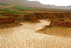 Türkiye 1.3 milyon hektar sulak alanı kaybetti