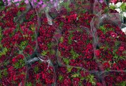 Çiçekçilik sektörü yılbaşı öncesi hareketlendi