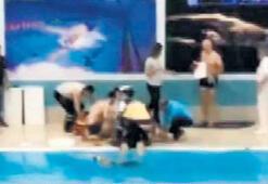 Havuzda ölüme kulaç attı