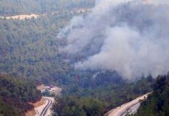 Suriye yangını Yayladağında kızılçam ormanını kül etti
