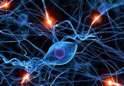 Robotlar nöronları insanlara göre daha iyi hedefleyip ameliyat edebiliyor
