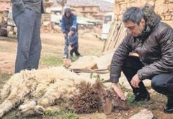 Necati Şaşmaz film için kurban kesti