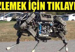 Katır robotlar ABD ordusuna desteğe geliyor