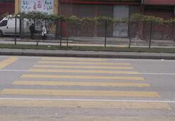 Trabzonda ilginç görüntü