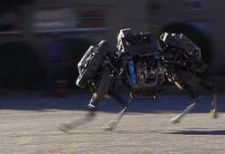 Bir robot şirketi daha aldı