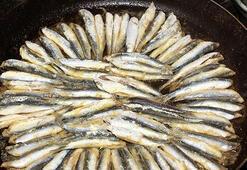 Gebelik boyunca balık tüketilmemeli