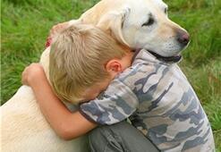 Plastik Cerrahlar: Köpek Isırığı Kurbanlarının En İyi Arkadaşları