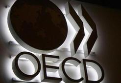 OECD: Türkiye büyümede ilk üçe girecek