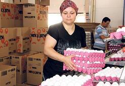 Türkiye 19 ülkeye  yumurta ihraç etti