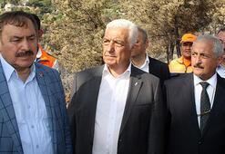 Bakan Eroğlu: Yanan alanların imara açılmasına izin vermeyeceğiz