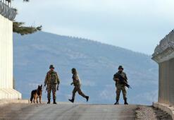 Son dakika... Katil sürüsü Türkiye sınırında Ellerinde 11 bin 500 boş pasaport var