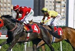 TJK at yarışlarını erteledi