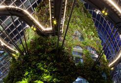 Ünlü İsimler Yeşil Binalar Zirvesinde