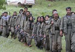 Yeni Şafak yazarından bomba gibi PKK iddiası