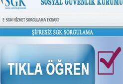 TC Kimlik No İle SSK / SGK Hizmet Dökümü ve Prim Sorgulama
