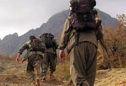 3 PKK terrorists killed