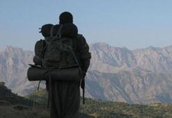Yaralı PKKlı hastaneden kaçtı