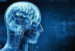 Yeni bir teknik beynin ne denli çalışıp çalışmadığını gösterebiliyor