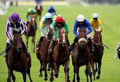 Terör saldırısı nedeniyle at yarışları iptal edildi