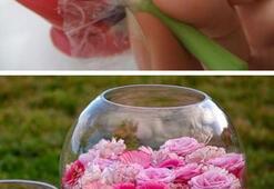 Kendin yap çiçek düzenlemeleri