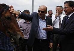 Bakan Fikri Işıka yarış atı hediye edildi