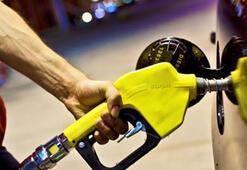 2012'nin son ayında Starpet'ten %14 indirim