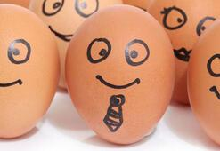 Yumurtaya ayar geliyor