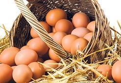 Damgasız yumurta rafa çıkamayacak