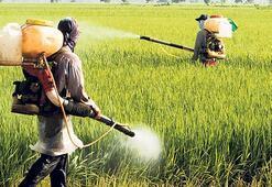 Gebelikte pestisit riski