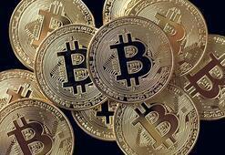 Tarladaki fındığı sattım nasıl 1 Bitcoin alırım
