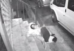 Köpeğe tecavüz davasında hakime sosyal medyadan tepki: #itinsahibibenim