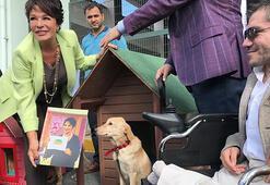 Hülya Koçyiğit sokak hayvanları için kulübe tasarladı