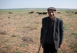 3 bin liraya çoban bulamıyoruz