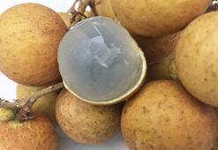 Longan meyvesinin inanılmaz faydaları