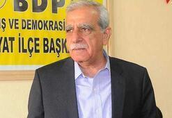 Ahmet Türk: CHP ve MHPnin karşı çıkmasının sebebi...