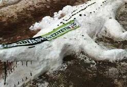 Kardan timsah yaptılar