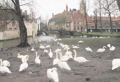 Masalsı Brugge'dan  romantik  Paris'e