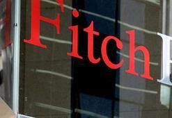 Fitch konut sektörünü değerlendirdi