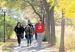 9 Türk üniversitesi  9 sıralamada ilk 500'de