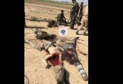 Vahşette IŞİDden aşağı kalmadılar