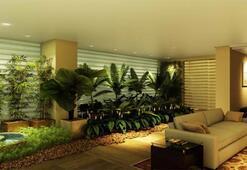 Ev bitkileri ile baharı dört mevsim yaşayabilirsiniz