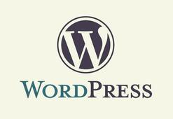 Wordpress.com Fotoğrafçılar ve Grafikerler için Portföy Sitesi Desteği Sunuyor
