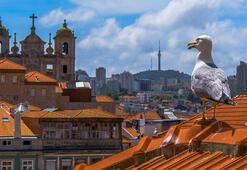 Ülkeye adını veren kent: Porto