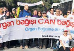 Organ bağışı için yürüdüler