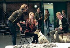 Almanya sinemasından 'yepyeni' bir seçki