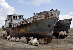 Aral Gölü: Artık var olmayan bir derya