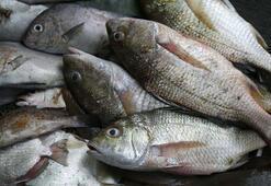 Balığın faydasını iki katına çıkarın