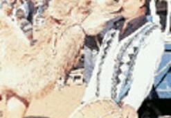 'Stajyer deve' güreşi unutup oyuna daldı
