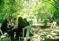 Arka bahçe zamanı